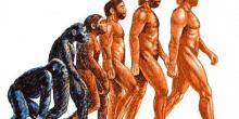 чарльз дарвин доклад 5 класс по биологии