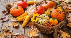 Сентябрь без плодов не бывает (составить небольшой текст по пословице)