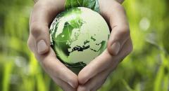 Международные экологические организации (доклад для 4 класса)