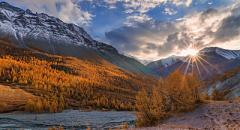Золотые горы Алтая (доклад 4 класс)