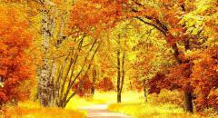 Что такое золотая осень?