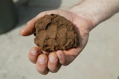 полезные ископаемые глина доклад 3 класс