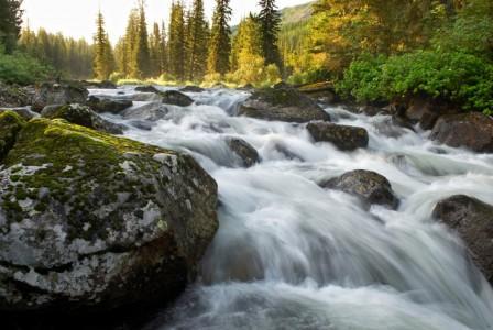 Почему надо беречь водоемы и реки (3 класс, доклад)