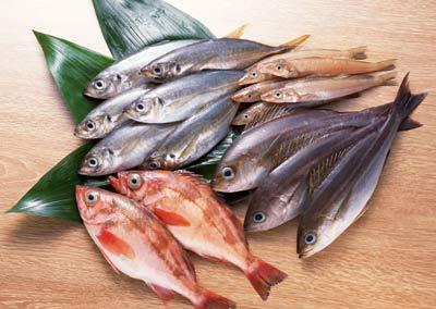 Доклад о рыбах (2 класс, окружающий мир)