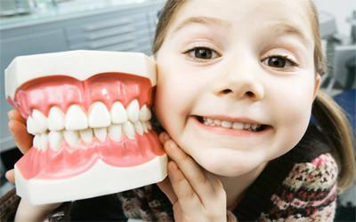 доклад про зубы для 4 класса